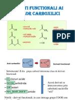 C4-5_Derivati Functionali Ai Acizilorcarboxilici I_AS