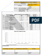13.1 Proctor Standar