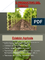 CPTABACO- ALGODON 2.ppt