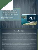 Impactos Ambientales en Un Proyecto de Irrigación Nacional