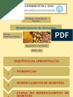 Beneficiamento-Final.pdf