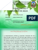 USO CONSUNTIVO Y DMANDA DE AGUA.pptx