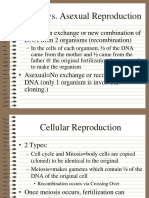 cellular reproduction notes for website