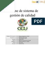 Informe de sistema de gestión de calidad N°2