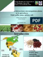 Aplicaciones de Las Interacciones Microorganismo-planta