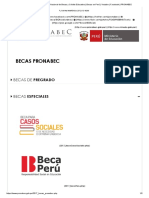 PRONABEC - Programa Nacional de Becas y Crédito Educativo _ Becas en Perú _ Youtube _ Facebook _ PRONABEC
