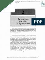 Gestion Dinamica de La Estrucctura Organizacional Lectura 1