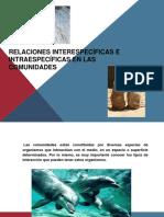 Relacionesinterespecficaseintraespecficasenlascomunidades 120501191705 Phpapp02 (1)