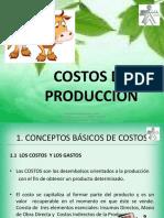 costos83396-111114051404-phpapp01.pptx