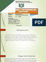 Informes y Dictamen de Auditoria