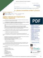 Estructura de La Organización de Proyectos