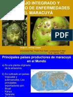 145468118-MARACUYA-ENFERMEDADES-pdf.pdf