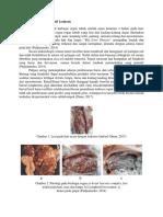 Perubahan Patologi Limfoid Leukosis