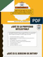 Informática Propiedad Intelectual-Ppt.