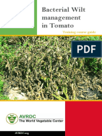 Bacterial-wilt-management-in-tomato_South-Asia.pdf