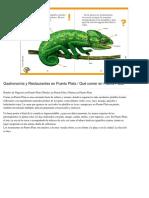 Gastronomía y Restaurantes en Puerto Plata