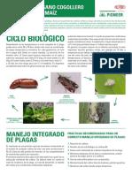 MANEJO_DE_GUSANO_COGOLLERO_EN_MAIZ.pdf