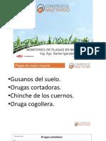 igarzabal.pdf