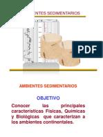 TEMA_4_Ambientes Sedimentarios.pdf