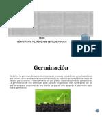 Germinacion