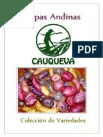 Variedades de Papas Andinas