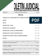 Boletin 240820171