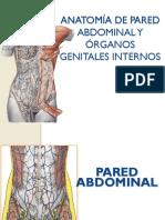 1. Anatomía Femenina (PI)
