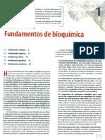 Fundamentos de bioquímica.pdf