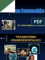Traumatismo Craneoencefalico Nay