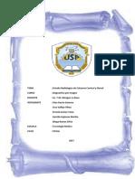 Estudio Radiologicos Cervical y Dorsal