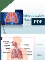 Introducción Neumología