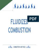FLUIDIZED_COMBUSTION.pdf