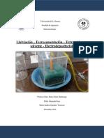 lab-hidro-final.docx