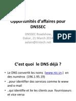 dnssec-business-case-fr.pdf