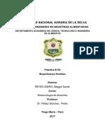 INFORME N°03- BIOPOLÍMEROS FLEXIBLES