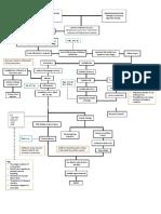 Community-Acquired Pneumonia Pathophysiology