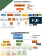 Organigramme de La SOCIETE PDF