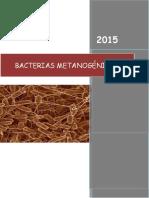 266877013-Microbacteriano.docx
