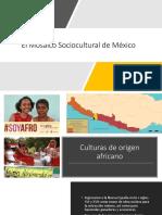 Mosaico Sociocultural