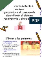 OA6 Efectos Nocivos Consumo de Cigarros
