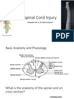 IT 3 - Spinal Cord Injury