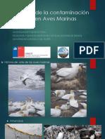 02- Presentación A. Varela- Contaminación Lumínica en Aves.pdf