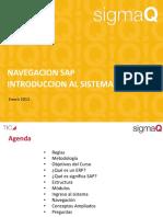 SAPnaveg.pdf