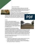 Agricultura y El Comercio Olmeca, La Venta