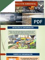 contaminacion_ambiental diapositivas