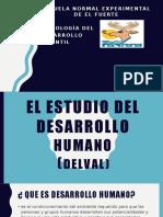 Estudio del desarrollo humano delval.pptx