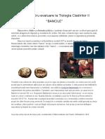 Bancile_Dan-Rinja-ARH121 (1)