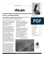 Spring 2008 Pelican Newsletter, Florida Sierra Club