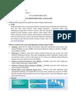 Bioinformatics 1 NCBI Dan EBI