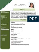 Hoja de Vida Jeydi Daniela Angulo Cardenas (1)